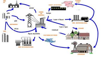 Esquema da ecologia industrial