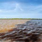 Encontro das águas (Manaus - Amazonas)