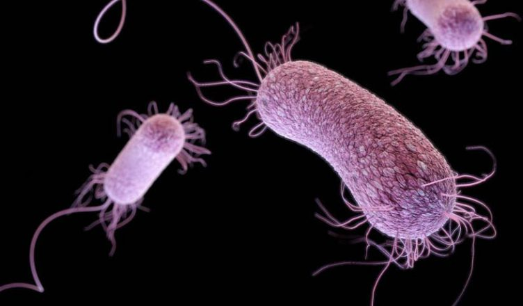 Novo-antibiotico