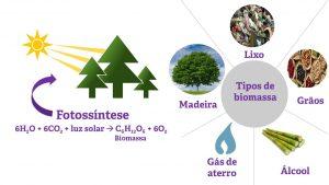 biomassa fotossíntese