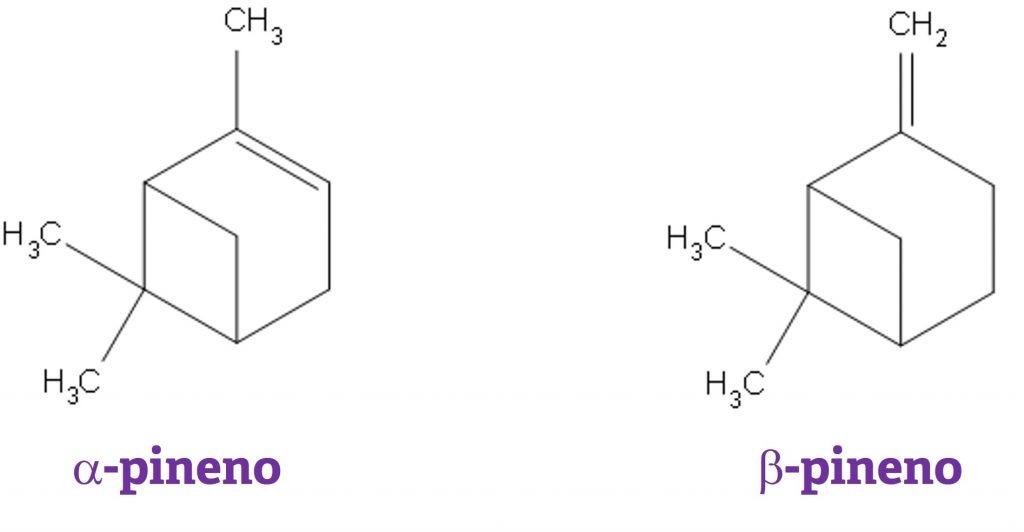 estrutura química alfa-pineno e beta-pineno