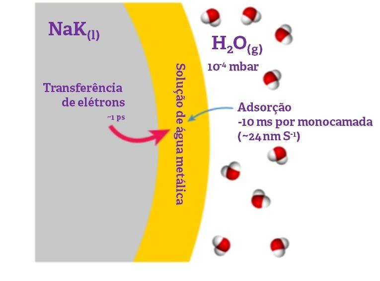 teoria água metálica