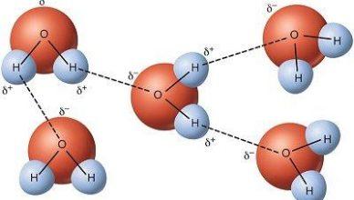 ligacao de hidrogenio